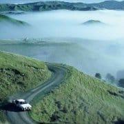 Nuova Zelanda 1982, Celica GT: debutto, vittoria, doppietta
